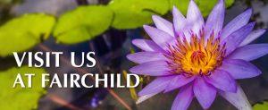 Fairchild Gardens